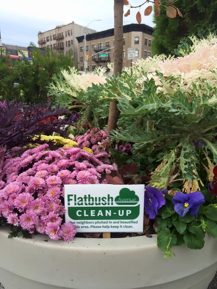 Flatbush Avenue Clean-Up card in flower pot